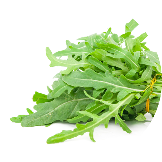 Arugula  Arugula reduces risk of obesity, diabetes and overall mortality