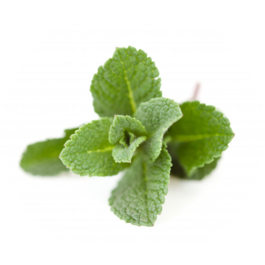 MintThanks to its chemical composition, mint can treat gastrointestinal problems